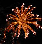 fireworks_jpg