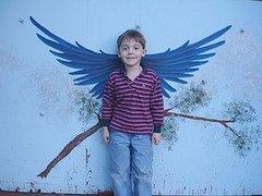 boy_wings