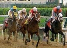 derby_race