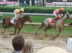 muddy_race