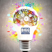 light bulb for blog post titled the BIGG idea behind BIGG success