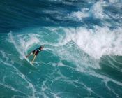 surf the wave of life