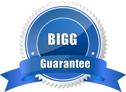 BIGG-Guarantee