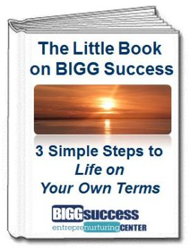 Little Book on BIGG Success Cover