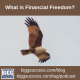 image of a soaring bald eagle with the words what is financial freedom