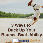 image of a dog jumping into the air to reflect our article about bounce-back-ability